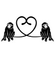 Animal love Couple of cute monkeys shaped heart of vector image vector image