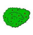 bush cartoon symbol icon design beautiful vector image