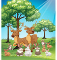 Deers and rabbits in the field vector image vector image