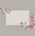 elegant frame design with sakura blooming branches vector image