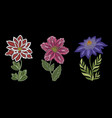 embroidery floral collection vector image vector image
