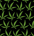Green Cannabis leafs on a black background vector image vector image