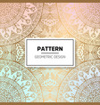 indian floral luxury ornament pattern vector image
