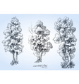 Isolated trees set hand drawn detailed vector image