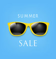 sale banner sunglasses and blue background vector image vector image