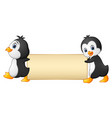 two penguins cartoon holding a blank banner vector image