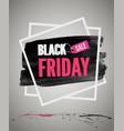 black friday sale promotion vector image