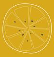 Lemon horizontal cut