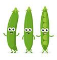 three funny peas vector image vector image