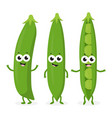 three funny peas vector image