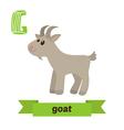 Goat G letter Cute children animal alphabet in vector image