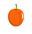apricot icon flat style vector image vector image