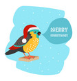 bird with santa hat christmas car template vector image vector image