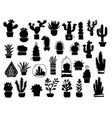 cactuses silhouette set cactuses aloe and vector image vector image
