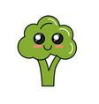 kawaii cute tender broccoli vegetable vector image vector image