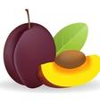 Prunes vector image vector image