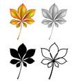 set plant leaf vector image vector image