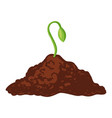 sprout green icon growing from black soil vector image