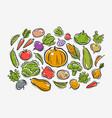 vegetables set farming horticulture concept vector image