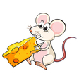 A mouse eating cheese vector image