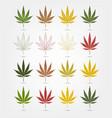 big set of realistic marijuana leaf cannabis vector image