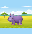 cartoon funny hippo in the jungle vector image