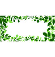 frame sprigs with green leaves vector image