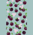fresh purple plum seamless pattern with pink vector image vector image