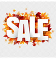 sale poster with colorful autumn leaves vector image vector image