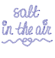 Sand in the air vector image