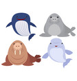 sea animals on white background vector image vector image