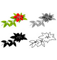 set hibiscus flower vector image vector image