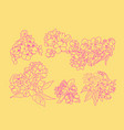 set sketch line art of cherry blossom flowers and vector image vector image