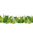 tropical palm leaves seamless border vector image