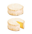 camembert or brie cheese block realistic vector image vector image
