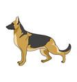 cartoon of german shepherd dog vector image