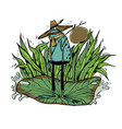 character design frog vector image