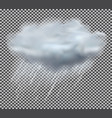cloud and rain drops on transparent background vector image vector image