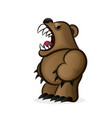 flat design grizzly bear icon vector image