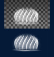 fountain cascade realistic spiral water jets vector image vector image