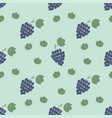 grapes branch pattern vector image vector image