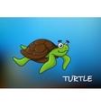 Sea turtle character vector image