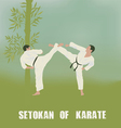 two men are engaged in karate vector image