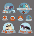 vet clinicpet shop and grooming simple veterinary vector image