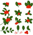 holly berry branch set for christmas wreath vector image