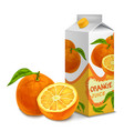 Juice pack orange vector image vector image