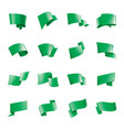 waving the green flag on a white background vector image