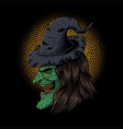 witch hide on side vector image vector image