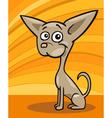 Chihuahua dog cartoon vector image vector image