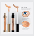 concealer cosmetic package with face makeup vector image